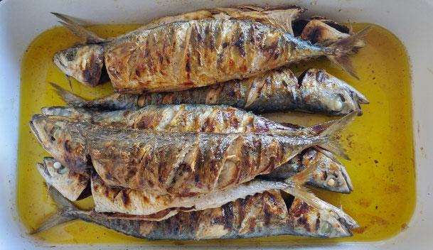 #povlja #islandbrac #wyspabrac #isolabrac #inselbrac #adriatic #sea #mare #meer #dalmatia #dalmazia #dalmatien #croatia #croazia #chorwacja #kroatien #apartmentspovlja #holidayapartments #vacation #vacanze #urlaub #grill #fish