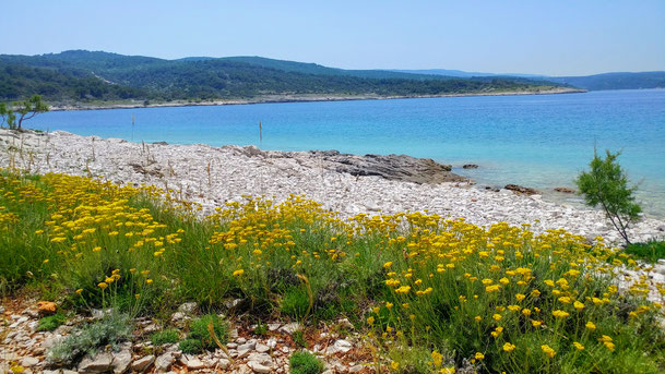 Croatia, Island Brac, Brac, Povlja, Apartments Povlja, Apartments Gracin, Holiday Apartments