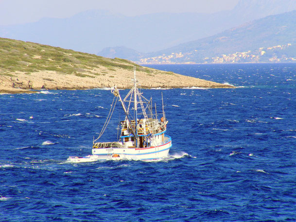 #povlja #islandbrac #wyspabrac #isolabrac #inselbrac #adriatic #sea #mare #meer #dalmatia #dalmazia #dalmatien #croatia #croazia #chorwacja #kroatien #apartmentspovlja #holidayapartments #vacation #vacanze #urlaub #fishingboat