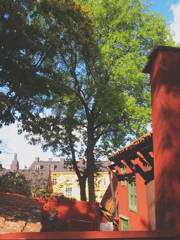 stockholm suède bigousteppes toits rues rouge