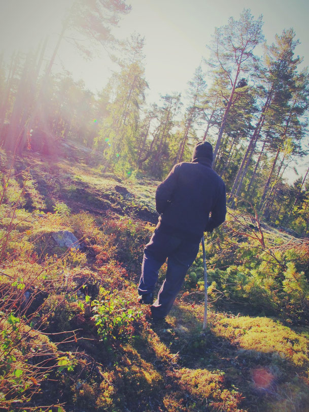 svinninge stockholm rencontre suède bigousteppes bois matin