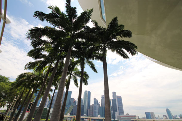 Weltreise Singapur Things do to in Singapur Asien Reiseblog Reisebericht Reisetipps