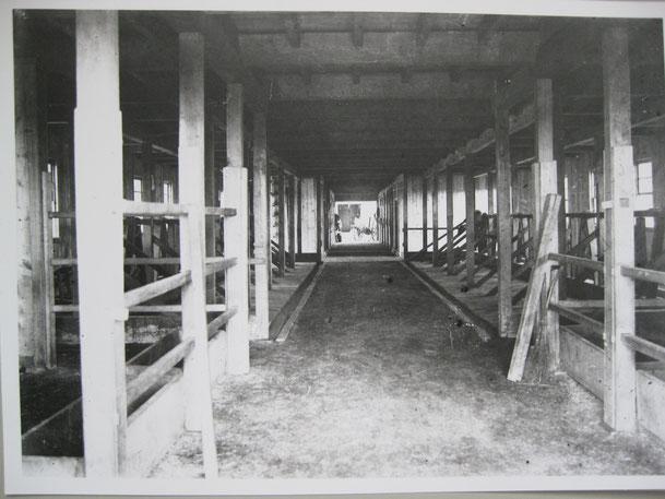 十勝開墾株式会社熊牛農場建物内部と思われる写真