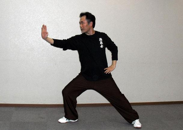 陳式太極拳の乱扎衣の写真です。
