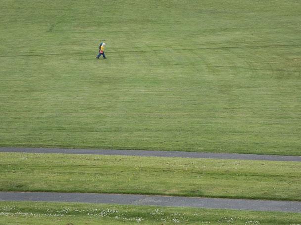 Rheinaue Bonn, Zweisamkeit, zusammen, Zusammen allein, Wege, Wiese, Grünfläche