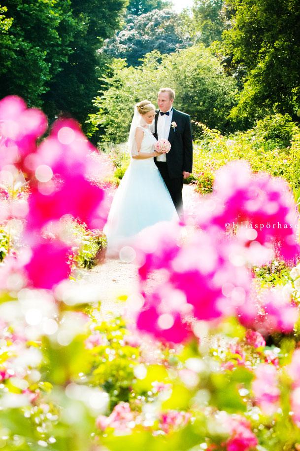 Hochzeit, Paarshooting, Brautpaar, liliaspoerhase, Lilia Spörhase, Fotografie, Planten un Blomen, Hamburg, Blumenmeer