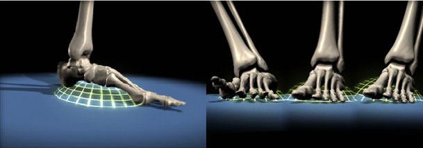 Barefoot Scienceで理想的な足のアーチづくりができる