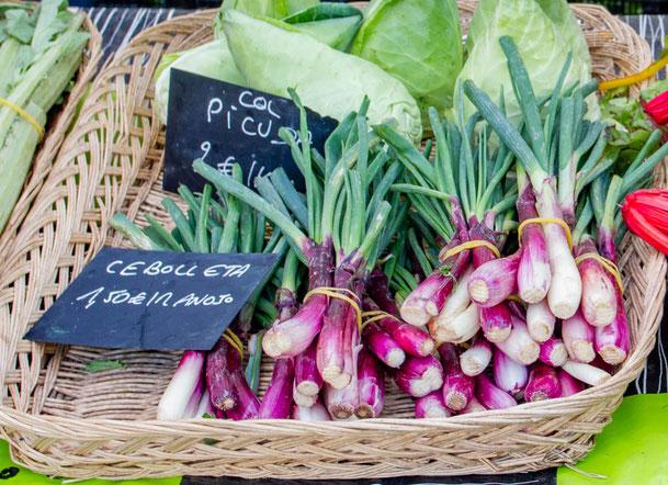 Organic spring onions farmers market