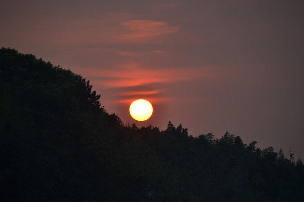 れんげいじに沈む太陽0811 18:13