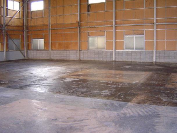 床プライマー塗り