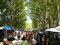 Am nächsten Tag ein kleiner Spaziergang auf dem Markt...