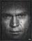 Steve McQueen#4  123 x 96 cm