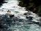 Rafting auf dem Rio Fuy