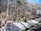 Asche und Sand - Nationalpark Puyehue