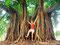 Subtropisch - Baum in einen Park in Porto Alegre