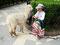 Aufgepasst - Indiomädchen mit Alpaka