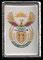Sudáfrica (escudo nacional).