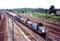 Approchant de Tergnier le 4 août 2000, trains de céréaliers emmené par la BB 66455, suivie par les 66489, 422 et 477 - Photo MB