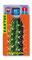 Stachelbox cardbox c 053 Kaktus
