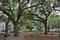 ChippewaSquare ... hier wurde die berühmte Szene mit Forrest Gump auf der Parkbank gedreht