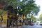 La Boca ... Fanshop in der engen Gasse vor dem Stadion.