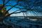 Rügen: Steilküste bei Sassnitz