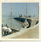 1985.86 Port de La Flotte en Ré . Coll. Le Rallier