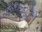 Nr.160 - 30x40cm - 27.11.2014 - der Baum ist LILA nix blau (doofeKameraaaa)