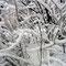 "So ""tief"" ist der Schnee, gerade 1-2 cm."
