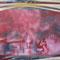 """""""Rotholz"""" - 2014 - Öl auf Leinwand - 140 cm x 120 cm"""