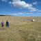 Visite d'un élevage d'alpacas