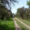 Parque El Rey