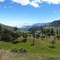 En route pour le volcan Chimborazo