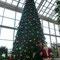 淡路SAオアシスのクリスマスツリーでサンタさんと一緒に(*^。^*)