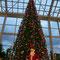 「サンタさん。お願い・・・クリスマスプレゼント●●をください(^^)」