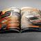 Pagina stampa doppia per Sebastien Loeb Rally Evo (Milestone)