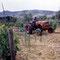 Fiat 415 Traktor (Quelle: Centro Storico Fiat)