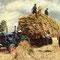 Fordson Major Traktor (Quelle: CNH)