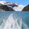 Blick zurück auf den Holgate Gletscher