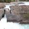 Eine natürliche Steinbrücke im Yoho Nationalpark