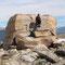 Eine seltene zweibeinige Gattung auf dem Mount Whistler