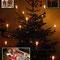24.12.2009: Weihnachten in Familie unter einem wunderschönen Tannenbaum und natürlich auch mit Weihnachtsgans am 25.12.2009