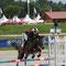 Vénus Pearl, Sologn'Pony 2014, finaliste cycles classiques 5 ans C
