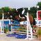 Vénus Pearl, Sologn'Pony 2013, mention Très Bon finale cycles classiques 4 ans C
