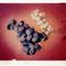 """Preuvenemint-Druiven"" Polaroid image transfer, 20x25cm, 2006, 650 €"