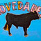 """""""NOVEDADES"""",  Acrylic, velvet, fabric, tar, 36 X 48 inch.   €  4,500"""
