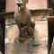 Hundeähnliches Wesen: Wächter des Hauses oder Todesbote in Dämonengestalt