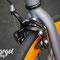Biciclette fixed LAMPO