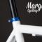 Particolare collarino anodizzato blu fixed bike Aqua
