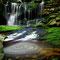Elakala Wasserfall, cc-by-sa-2.0, commons.wikimedia.org, www.forestwander.com